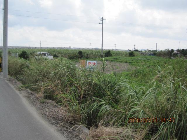 売土地(農地) 中城村南浜 668.5坪参考画像2